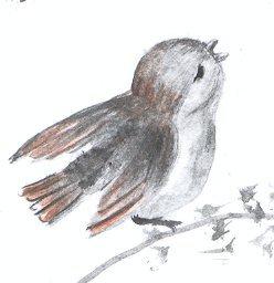 Ptit.oiseau.JPG