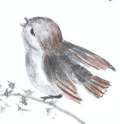 tit.oiseau.JPG